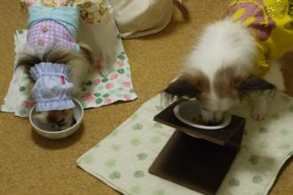 ご飯、早い!