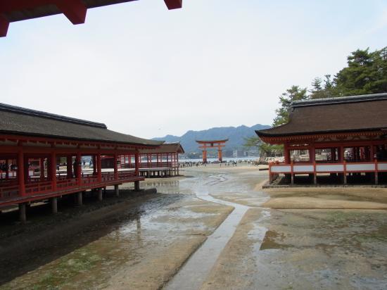 神社から見た鳥居