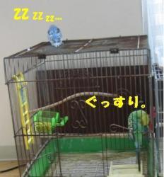 20070504101846.jpg