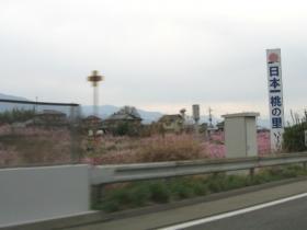 日本一の桃の里