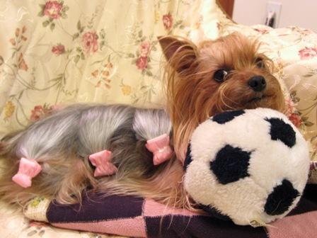 ボールを枕に