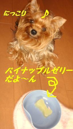 KIF_4975.jpg