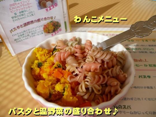 dogcafe5.jpg