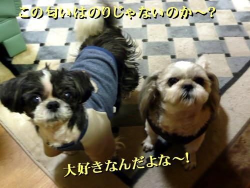 norisuki1.jpg