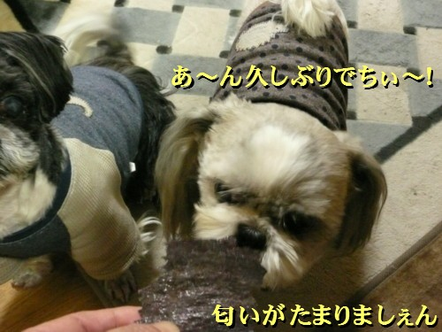 norisuki5.jpg