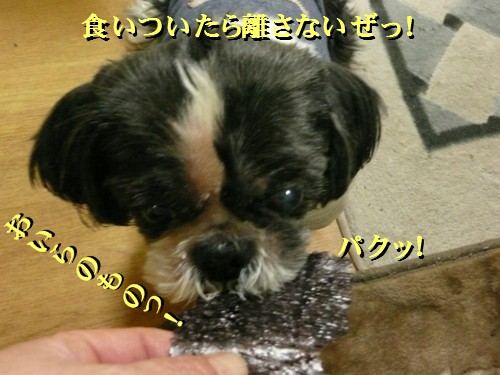 norisuki6.jpg