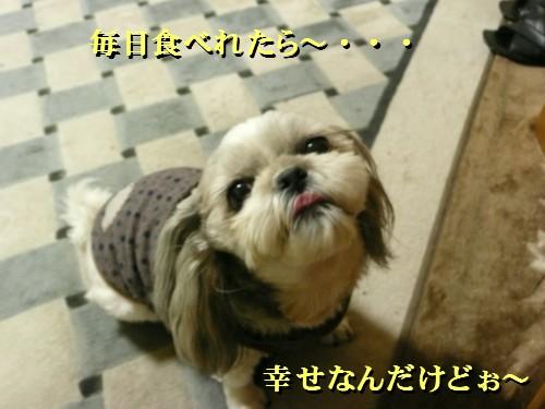 norisuki8.jpg