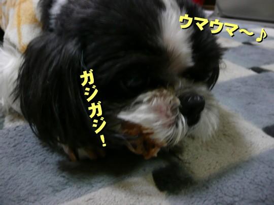 tonsoku3.jpg