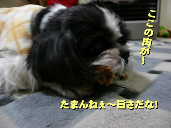 tonsoku4.jpg