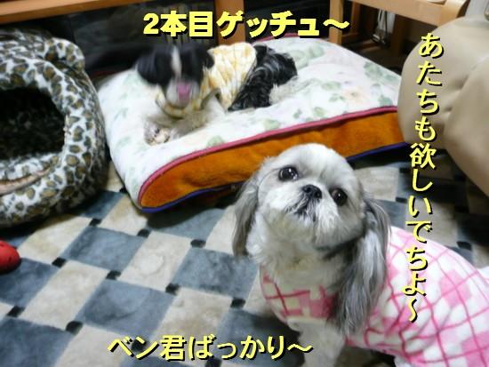 tonsoku6.jpg