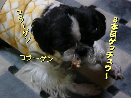 tonsoku7.jpg
