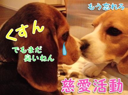 20110906_05.jpg