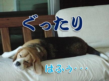 20110906_08.jpg