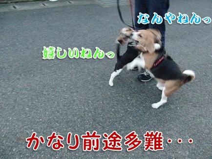 20110912_04.jpg