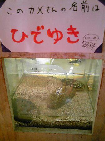 ひでゆきさん(1)