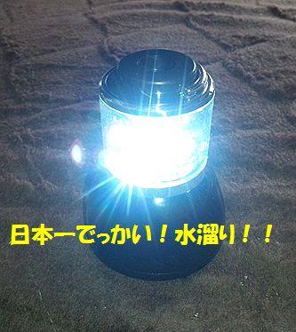 DVC00004_20110531124906.jpg