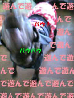 1_20071216222400.jpg