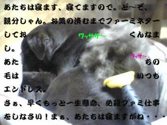 1_20071220111300.jpg