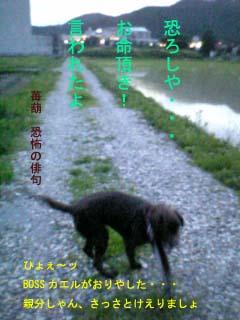 20070624135902.jpg