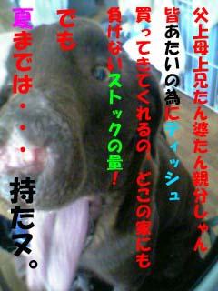 07-09-25_10-15のコピー