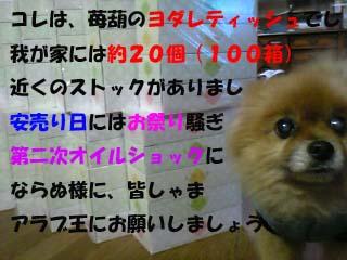 07-11-22_20-24のコピー