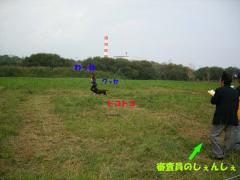 2_20071112235554.jpg