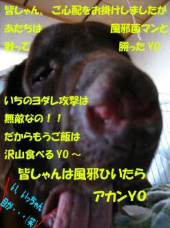 2_20071204145434.jpg