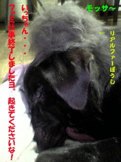 2_20071220111330.jpg