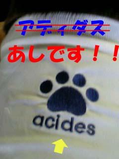 3_20071117223123.jpg