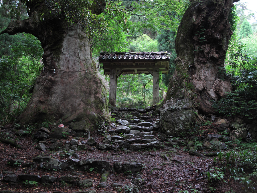 IMG_0670_菅山寺山門.jpg