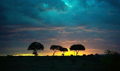 800px-1993_158-11A_Masai_Mara_sunset.jpg