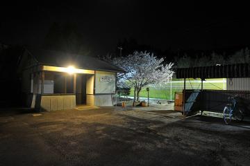 桜紀行2011(20)