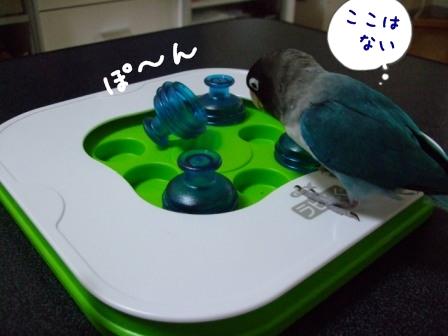 001_20110814101746.jpg