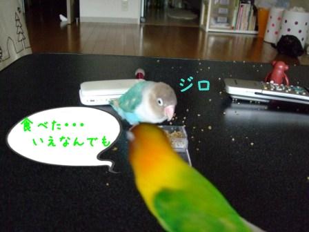 010_20110722101055.jpg