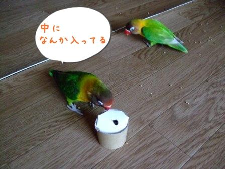 011_20110630090410.jpg