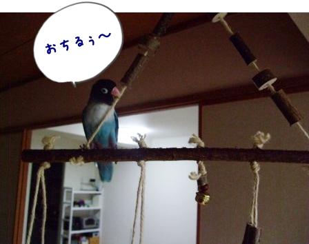 030_20110612111314.jpg