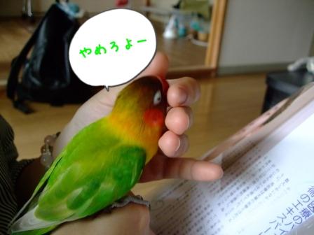 037_20110620093944.jpg