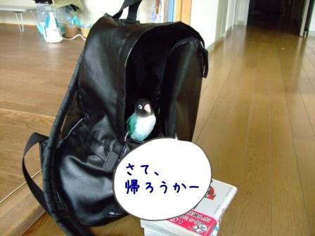 038_20110620093943.jpg