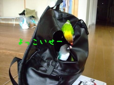 041_20110620094016.jpg