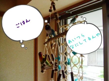 056_20110612111408.jpg