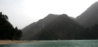 桜2011050202