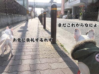 2012_01091月9日0002