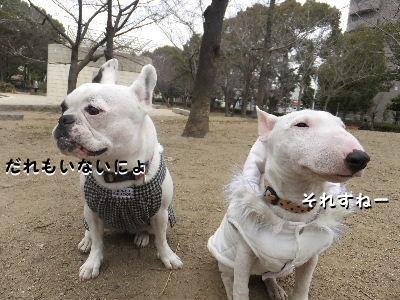 2012_01171月14日-0015