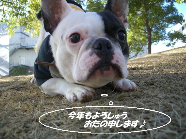 ☆☆2007 12 31ぼぉ~山 024