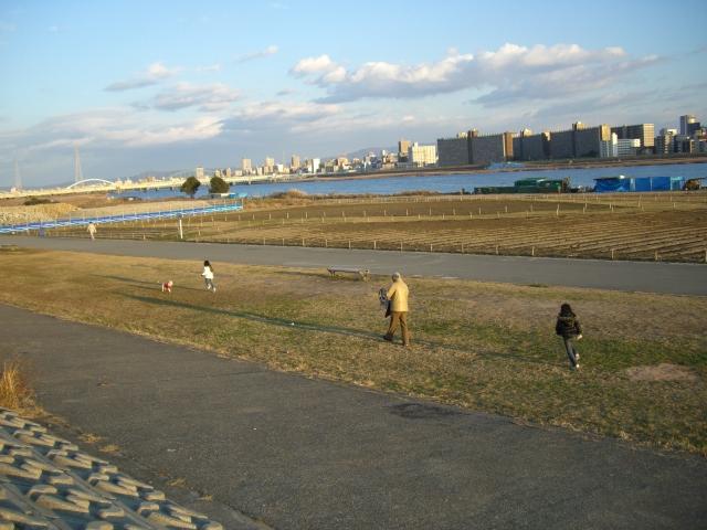 2008 1 1堤防 007
