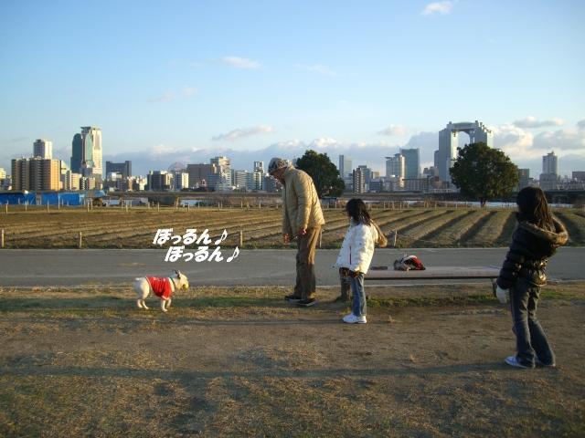 ☆2008 1 1堤防 015