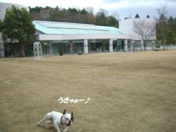 ☆2008 1 4伊賀へ 007