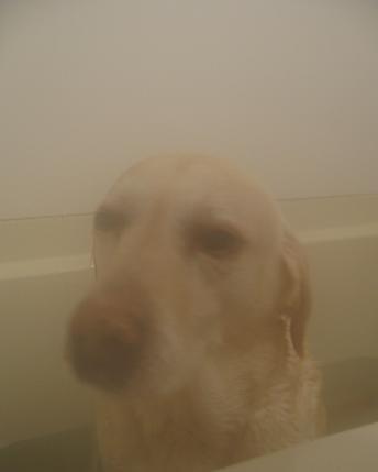 1201お風呂