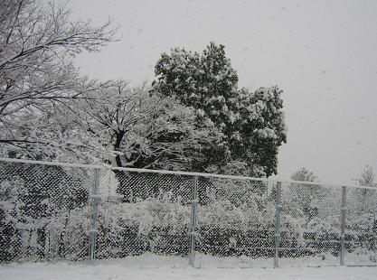2008292雪