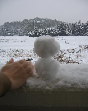 2008294雪